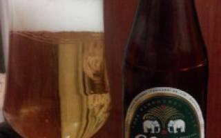 Пиво Chang Classic — Пивная бутылка