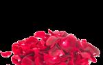Коктейль Цветок души (Flower of soul)