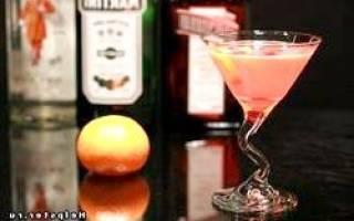 Делаем сами коктейли с Малибу — 10 лучших пошаговых рецептов для дома с ликером