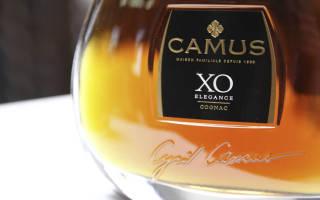 Коньяк Camus (Камю): история, виды и обзор вкуса