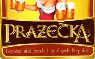 Пражечка — пиво из Чехии видео, Наливали