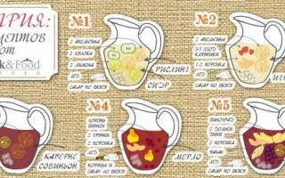 5 самых ярких вариантов коктейля — Сангрия, Drink — Food Inform