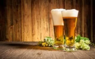 Рецепт домашнего венского пива (из венского солода), Алкопроф