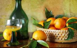 Настойка на мандаринах — рецепты из корок и мякоти на спирту, самогоне и водке