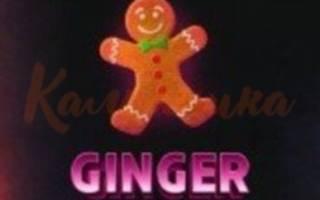 10 отзывов о бренде Duft — GingerBread (Имбирный Пряник) 100 гр
