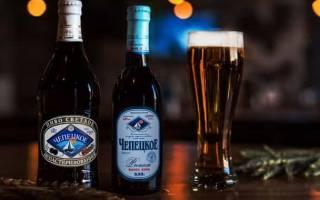 Чепецкое пиво и его особенности