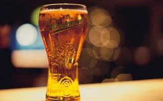 Пиво Старопрамен и его описание видео, Наливали