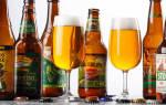 Пиво IPA: история, разница между APA, виды как пить