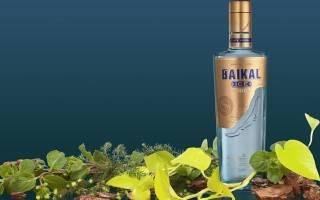 Водка «Байкал» – чистый алкоголь на кедровых орехах Видео, Наливали