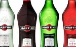 Виды мартини – изучаем классификацию напитка