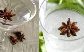 Анисовая водка: рецепты на самогоне, укропе, настойка, как пить