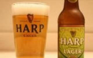 Пиво Харп (Harp): описание, история, особенности марки