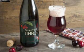 Вишневое пиво: сорта, названия и рецепты приготовления