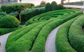 Le Jardin de Maman (LJM) — Мы Бла-Бла-Блайзуем