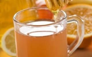 3 рецепта медовых коктейлей: состав и приготовление дома