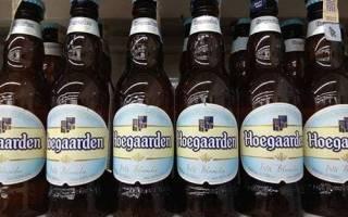 Обзор лучших марок нефильтрованного пива в России