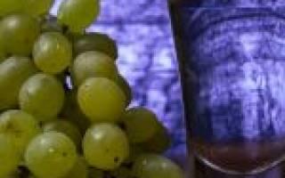 Писко – ароматный виноградный самогон из Перу и Чили
