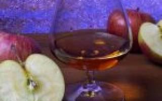 Домашний кальвадос – рецепт и технология приготовления