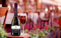 Шампанское Cанто Cтефано: обзор вкуса и видов