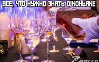 Все, что нужно знать о коньяке: 10 интересных фактов про крепкий алкогольный напиток на основе винограда