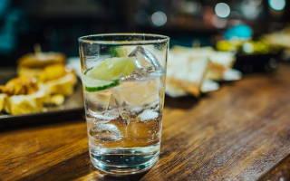 С чем пить джин и как закусывать