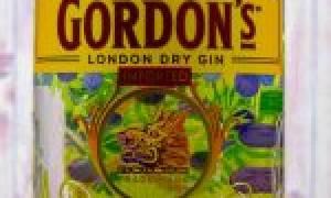 Джин Гордонс (Gordon — s): описание, история и виды марки